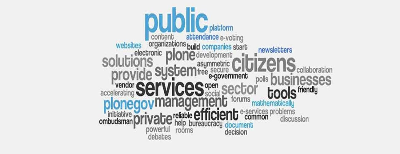 Network of Schools of Public Policy, Affairs, and Administration, Commission on Peer Review and Accreditation (NASPAA)