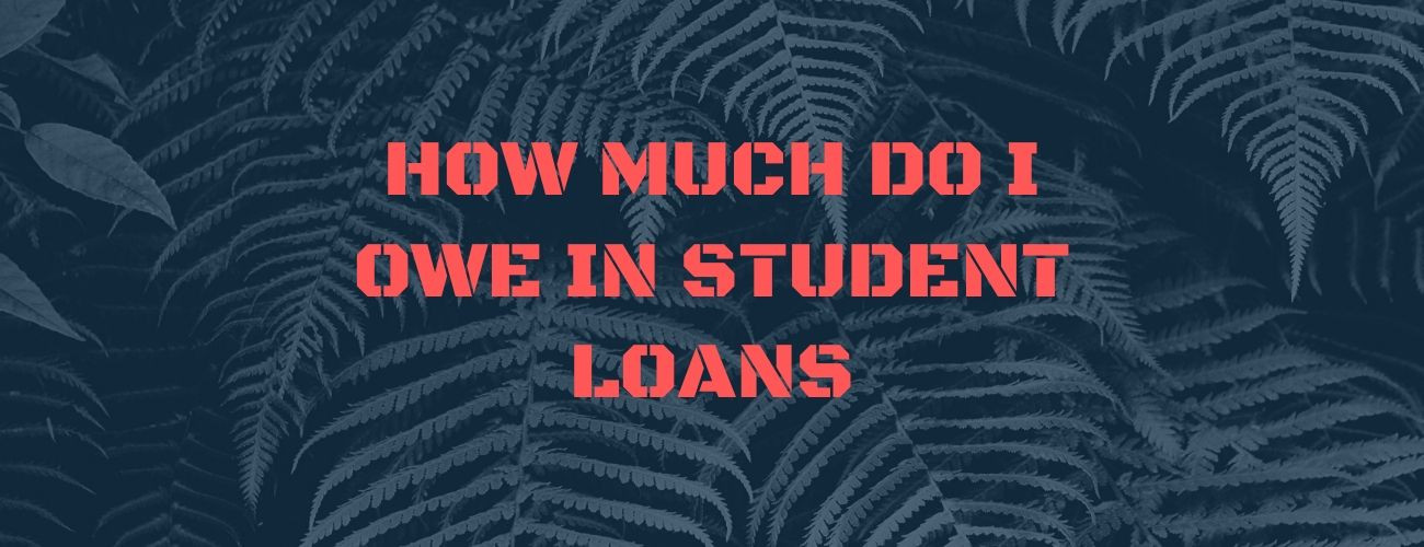 How Much Do I Owe In Student Loans: Ways to keep track!